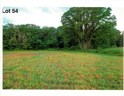 LOT 54 THE CLEARINGS, Kohler, WI 53044 - Photo 2