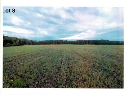LOT 8 THE CLEARINGS, Kohler, WI 53044 - Photo 2