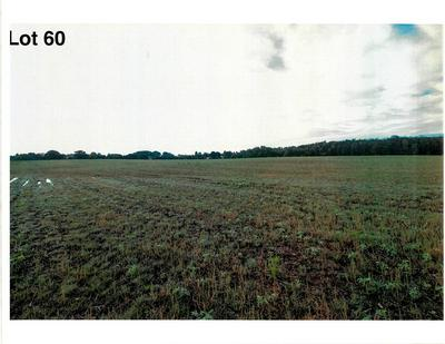 LOT 60 THE CLEARINGS, Kohler, WI 53044 - Photo 2