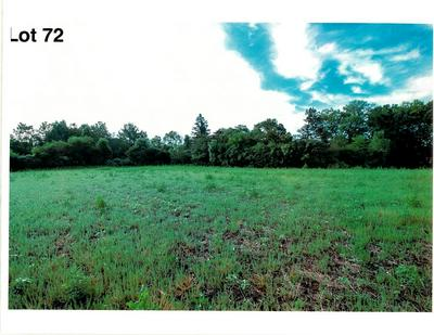 LOT 72 THE CLEARINGS, Kohler, WI 53044 - Photo 2