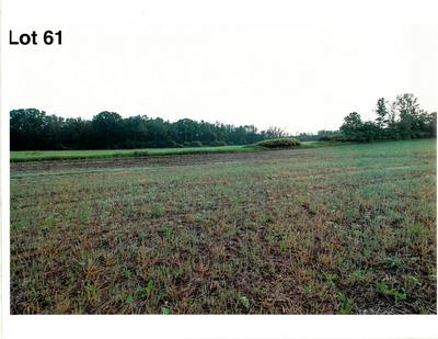 LOT 61 THE CLEARINGS, Kohler, WI 53044 - Photo 2