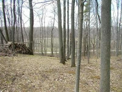 LOT 5 BURROWS LN, Rhine, WI 53020 - Photo 1