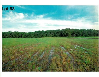 LOT 63 THE CLEARINGS, Kohler, WI 53044 - Photo 2