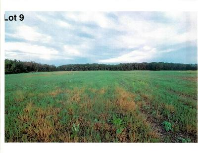 LOT 9 THE CLEARINGS, Kohler, WI 53044 - Photo 2