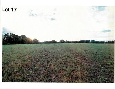 LOT 17 THE CLEARINGS, Kohler, WI 53044 - Photo 2