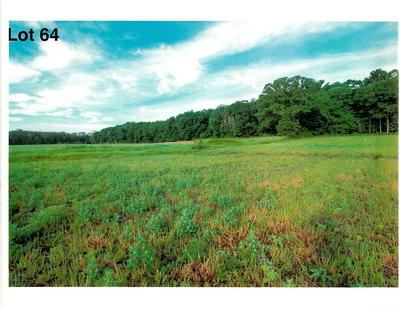 LOT 64 THE CLEARINGS, Kohler, WI 53044 - Photo 2