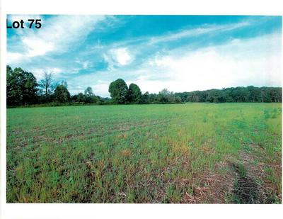LOT 75 THE CLEARINGS, Kohler, WI 53044 - Photo 2