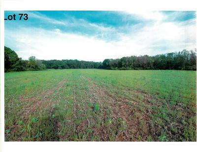 LOT 73 THE CLEARINGS, Kohler, WI 53044 - Photo 2