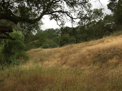 0 OLD DRYTOWN ROAD, Drytown, CA 95699 - Photo 1