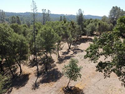 10 TULLIS MINE ROAD, Diamond Springs, CA 95619 - Photo 2