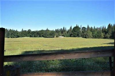 4255 INDEPENDENCE RD, Glencoe, CA 95245 - Photo 2