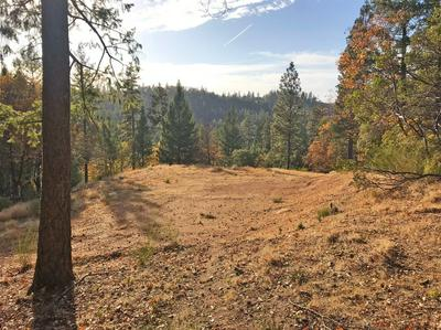 0 HOLLAND DRIVE, Placerville, CA 95667 - Photo 2