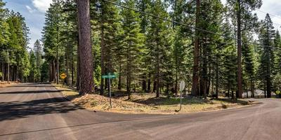 4867 SCIARONI RD, Grizzly Flats, CA 95636 - Photo 2
