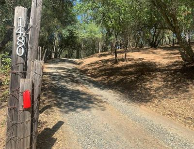 1480 CROOKED MILE CT, Placerville, CA 95667 - Photo 2