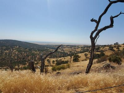 3508 POMMEL WAY, Copperopolis, CA 95228 - Photo 1
