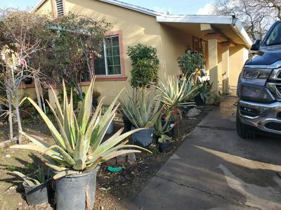 910 SOLARI AVE, Stockton, CA 95205 - Photo 2