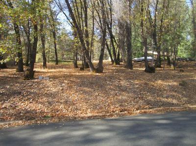 15489 PAMMY WAY, Grass Valley, CA 95949 - Photo 1