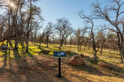 0 HAMMONTON BLUFF PARCEL 1, Smartsville, CA 95977 - Photo 2