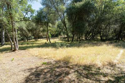 0 5 ACRES QUAIL RUN ROAD, Placerville, CA 95667 - Photo 1