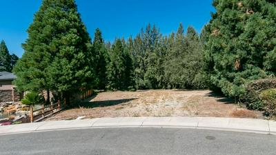 10012 RIVER RANCH CT, Oakdale, CA 95361 - Photo 2
