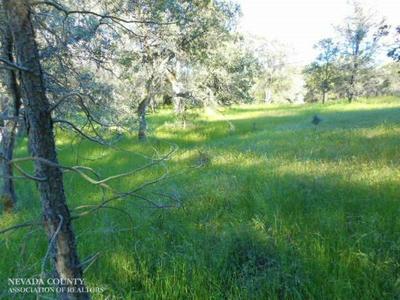 14725 BEYERS LN, Grass Valley, CA 95949 - Photo 1