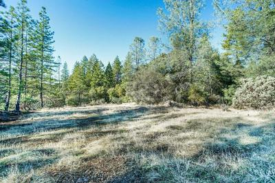 2 PUERTA DEL SOL, Pollock Pines, CA 95726 - Photo 1