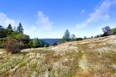 0 SOUTH 36 ACRES, Greenwood, CA 95635 - Photo 2