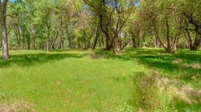 5909 CERRITO RD, Diamond Springs, CA 95619 - Photo 1