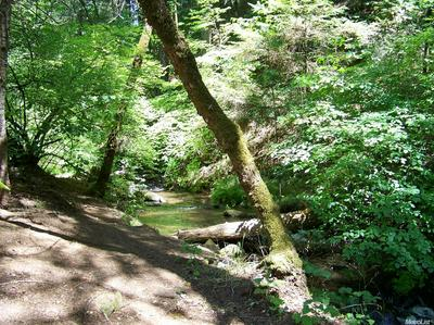 0 CLEAR CREEK ROAD, Placerville, CA 95667 - Photo 1