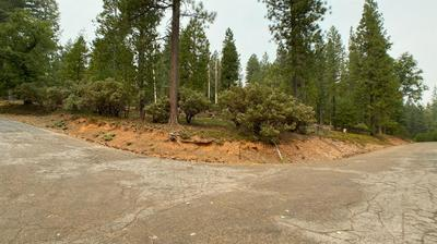0 MT. PLEASANT, Grizzly Flats, CA 95636 - Photo 1