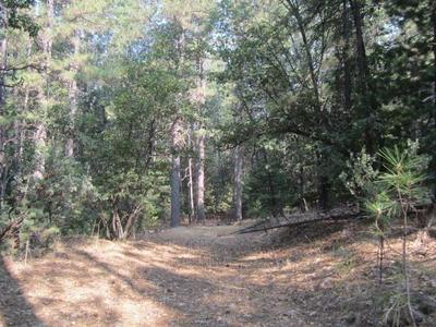 3792 STOPE DR, Placerville, CA 95667 - Photo 1