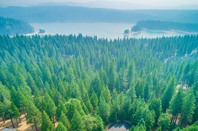 4661 DIO LINDA CT, Pollock Pines, CA 95726 - Photo 1