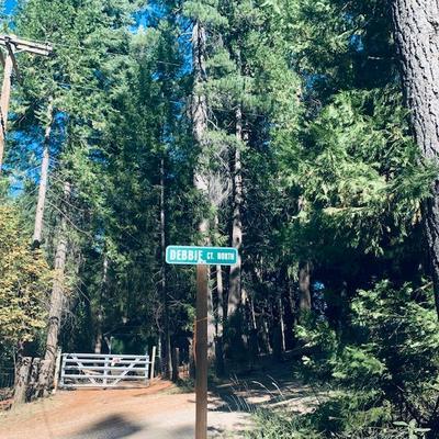 17725 DEBBIE CT N, Pioneer, CA 95666 - Photo 1