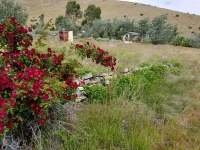 741 -565 COWBOY JOE ROAD, DOYLE, CA 96109 - Photo 1
