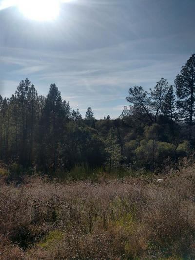 1 SLIGER MINE ROAD, Greenwood, CA 95635 - Photo 2