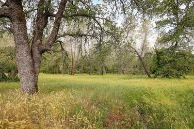 2 SANDSTONE LANE, Browns Valley, CA 95918 - Photo 1