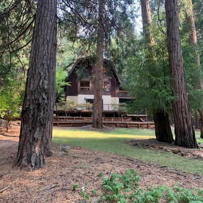 4100 SIERRA SPRINGS DR, Pollock Pines, CA 95726 - Photo 2
