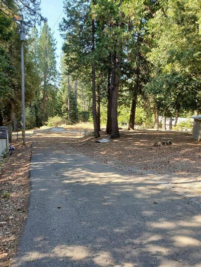 1881 HENRYS PL, Camino, CA 95709 - Photo 1