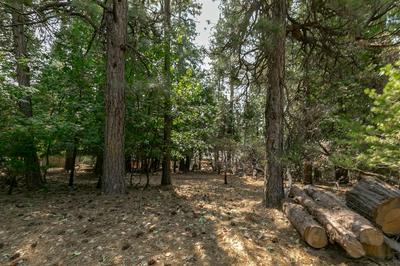 5480 DAISY DR, Pollock Pines, CA 95726 - Photo 2