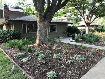 2701 BIDWELL ST APT 1, Davis, CA 95618 - Photo 1