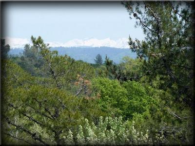 0 KINGVALE ROAD, El Dorado, CA 95623 - Photo 2