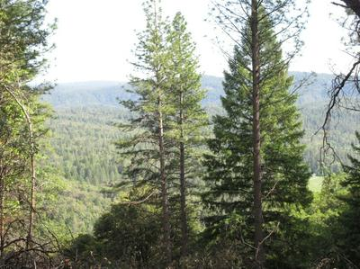 15973 STATE HIGHWAY 49, Camptonville, CA 95922 - Photo 2