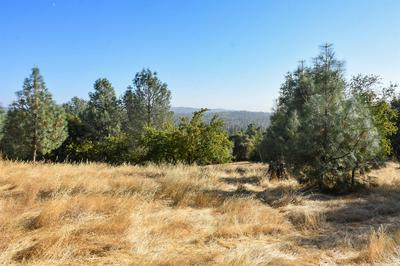0 HIGHWAY 49, Placerville, CA 95667 - Photo 2