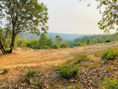 8343 MOSQUITO RD, Placerville, CA 95667 - Photo 2