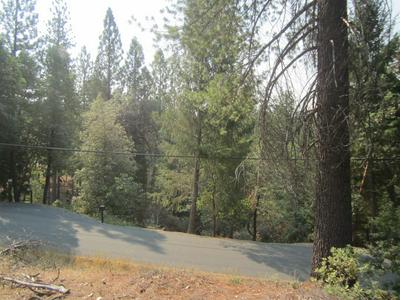 3377 LUPINE LN, Placerville, CA 95667 - Photo 1