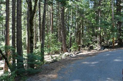 30 CEDAR LN, Sierra City, CA 96125 - Photo 2