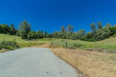 18171 HALE RD, Volcano, CA 95689 - Photo 1