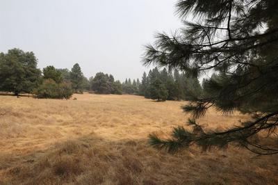 17380 CHARLESTON RD, Volcano, CA 95689 - Photo 1