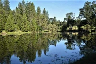 4255 INDEPENDENCE RD, Glencoe, CA 95245 - Photo 1