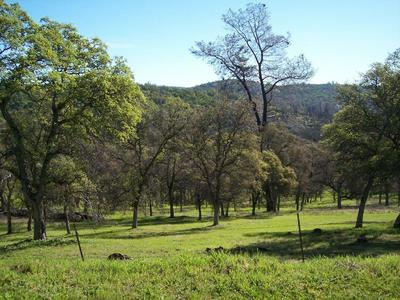 3 DEER HOLLOW TRAIL, Browns Valley, CA 95918 - Photo 2